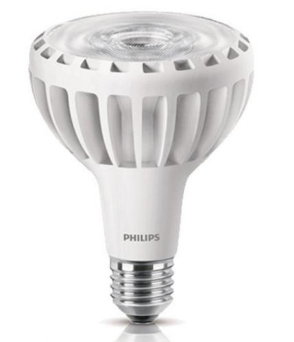 Master LED PAR30L 32W